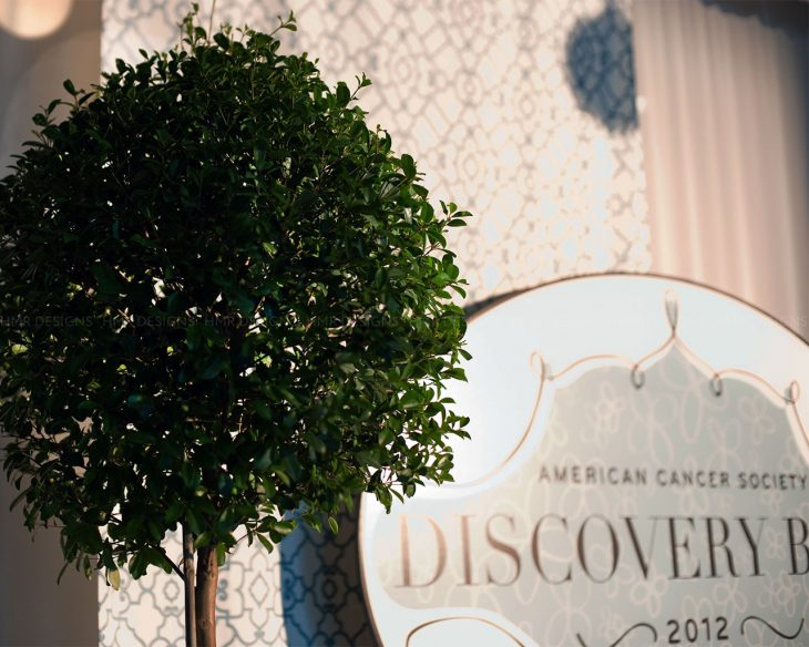 Decor-details-at-the-2012-ACS-Discovery-Ball-by-HMR-Designs