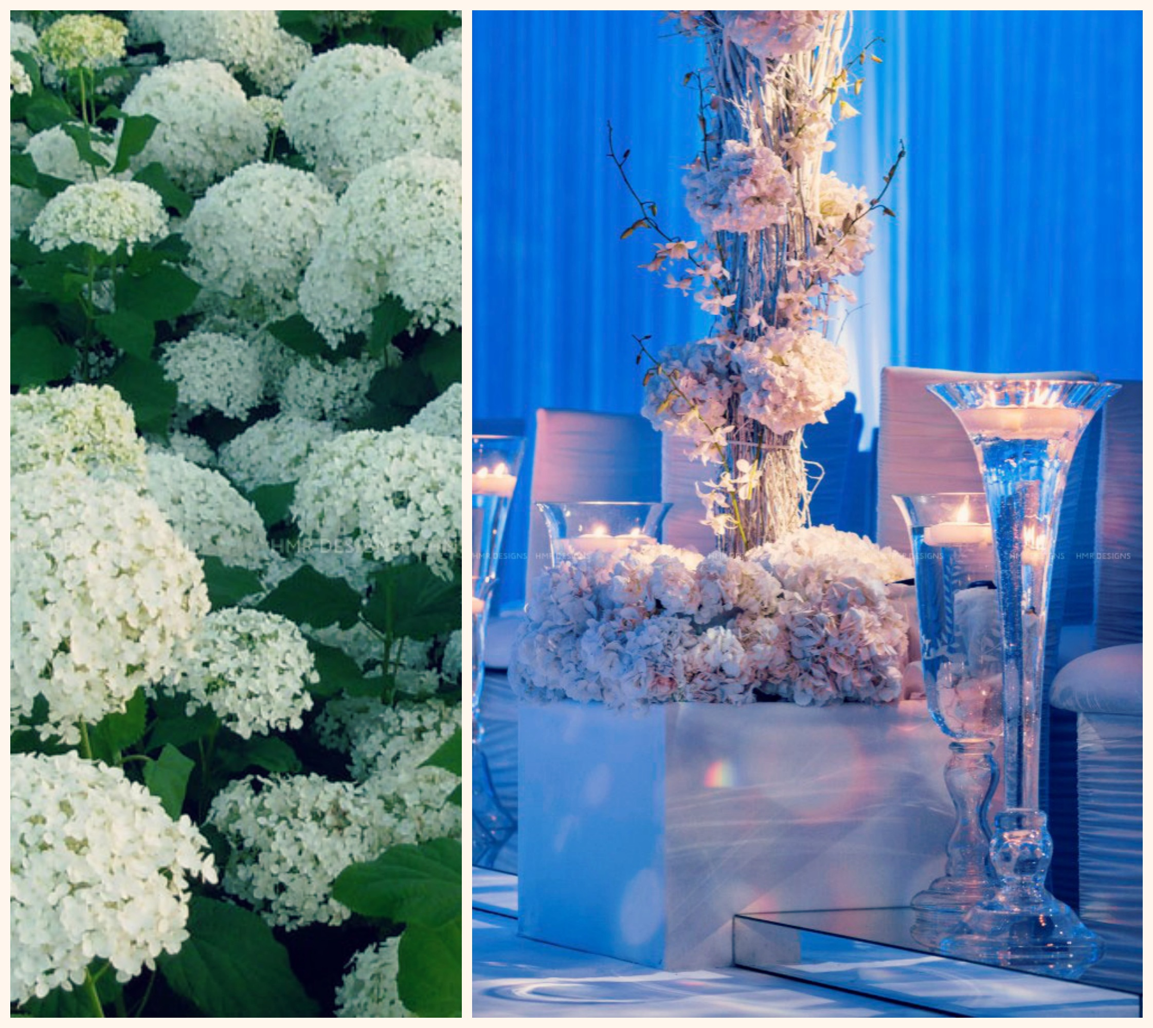 Lush white hydrangea artfully climbs a pillar at Four Seasons Hotel Chicago. Kent Drake Photography / Birch Design Studio