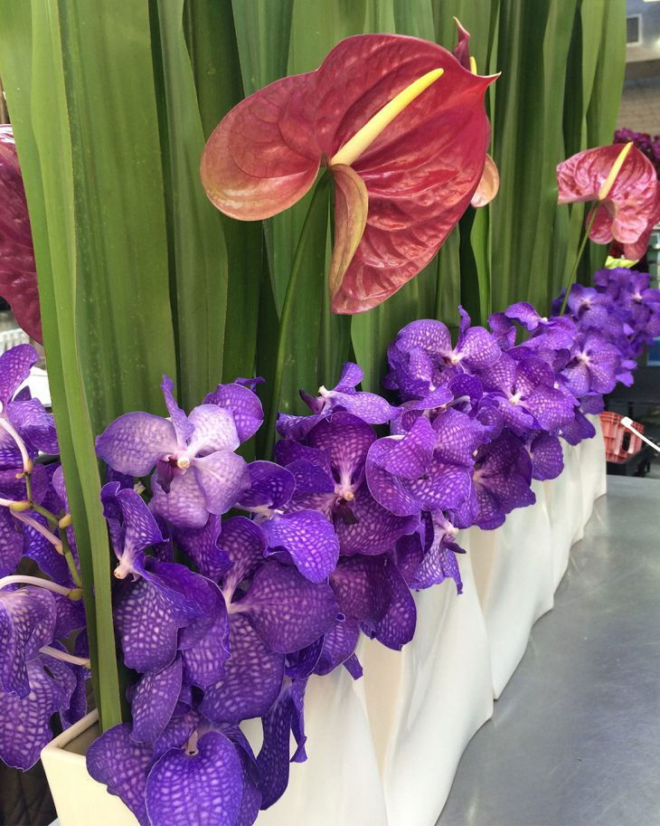 anthurium-floral-arrangement-by-hmr-designs