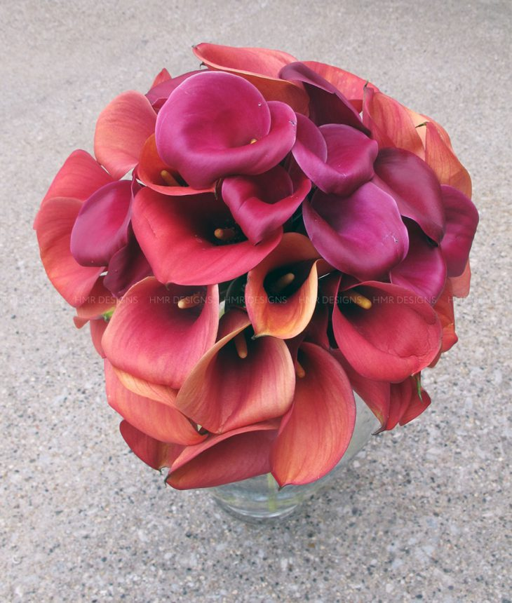 calla-lilies-for-mother's-day-flowers
