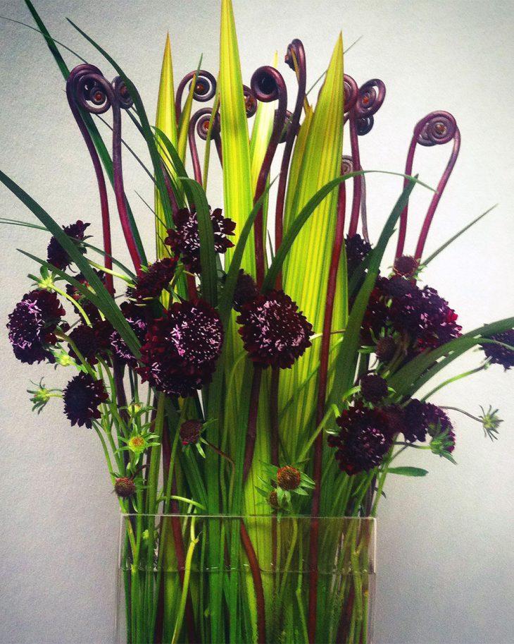 fiddlehead-fern-arrangement-by-hmr-designs