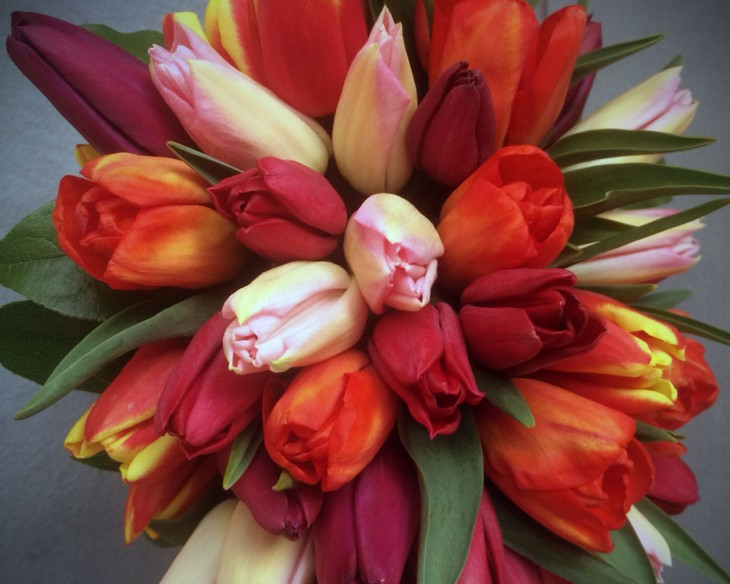 We've enjoyed all spring flowers, especially bright bunches of tulips.