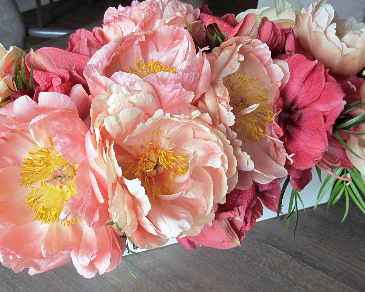 giant peonies at HMR Designs in Chicago