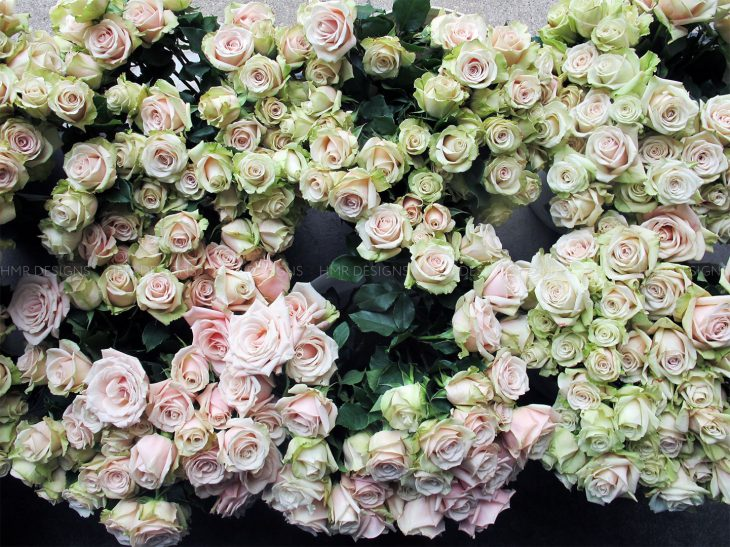 pink-and-green-roses-mother's-day-flowers