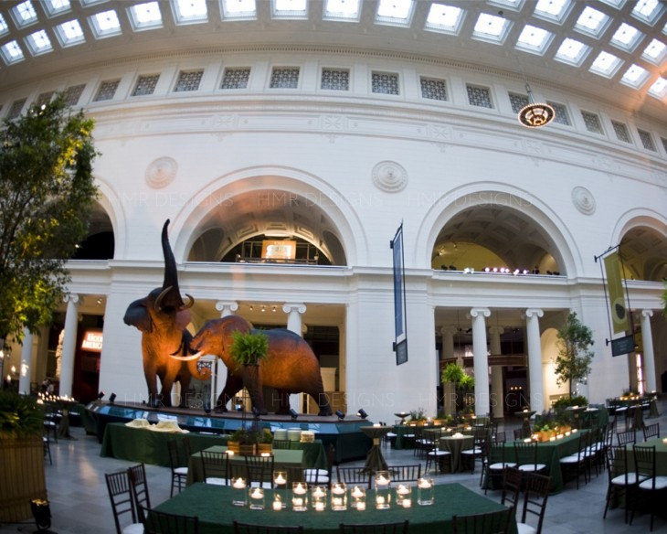 Corporate event decor by HMR Designs at the Field Museum Chicago