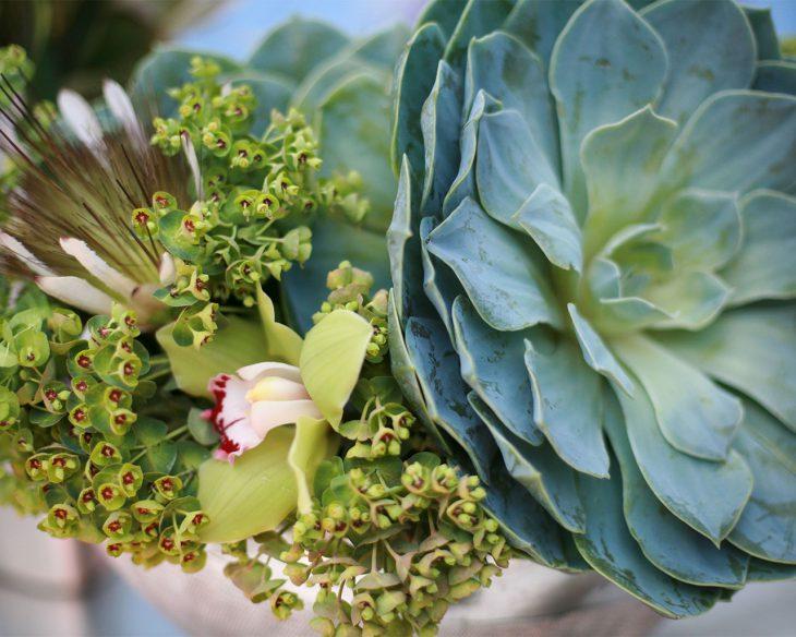 succulent-arrangment-by-hmr-designs