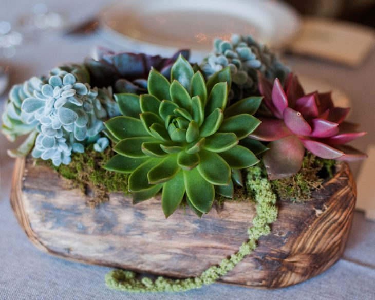 succulents-in-a-wood-container-by-hmr-designs